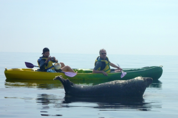 Kayak, avec Sur Mer Bréhat